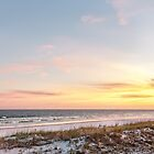 The Sand Dunes of the Gulf of Mexico by Kay Brewer