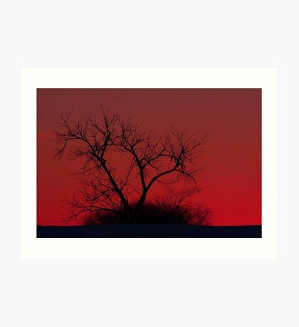 Red sky at night - Bare Tree Art Print