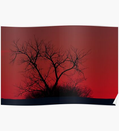 Red sky at night - Bare Tree Poster