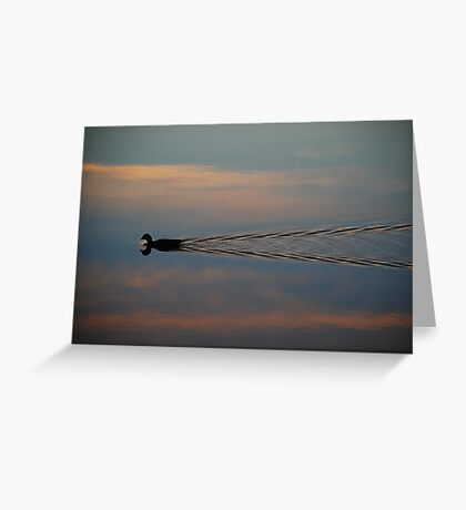 Swimming in the Sky! Greeting Card