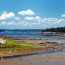 Sea cottage, Tenants Harbor, Maine by fauselr