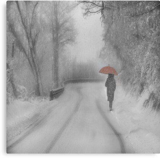 And Winter came by M a r t a P h o t o g r a p h y