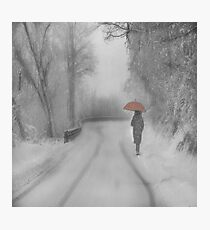 And Winter came Photographic Print