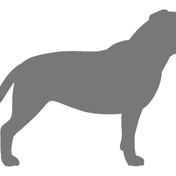 Grey Staffordshire Bull Terrier Silhouette by ShortCoffee