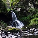 Bushkill Falls 6 by EstherJoy