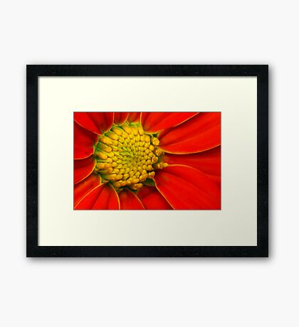 Yellow within Red Framed Print