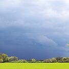 Thunderstorm by Peter Voerman