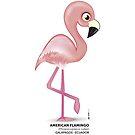 American Flamingo Bird by makikelly
