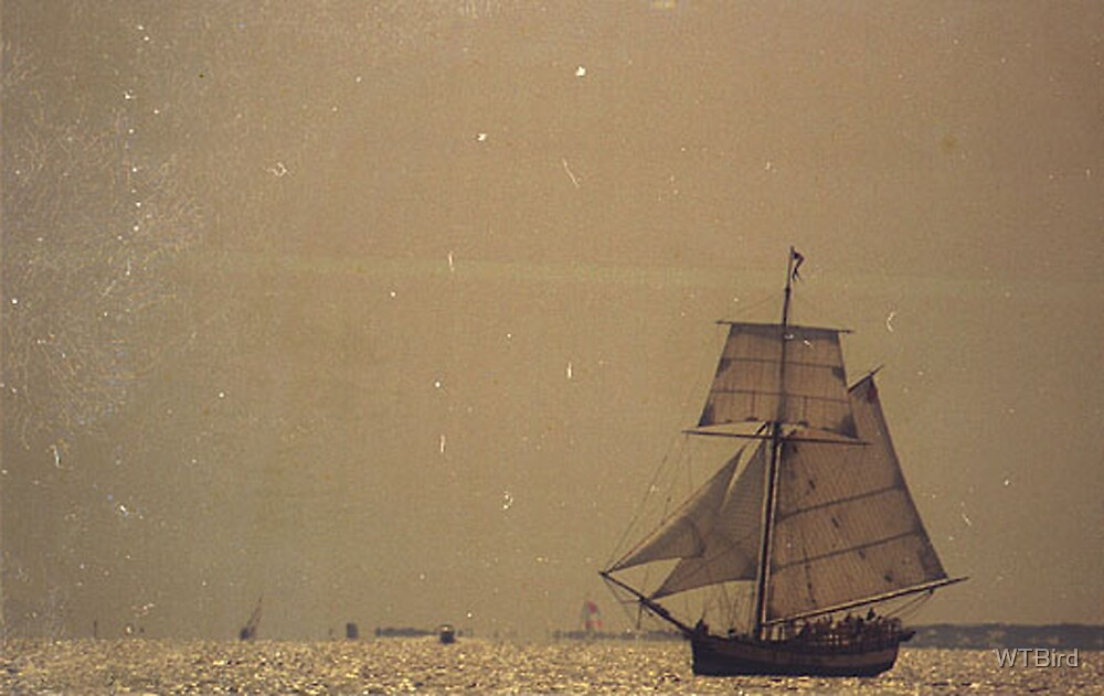 Old Sailing Ship by WTBird