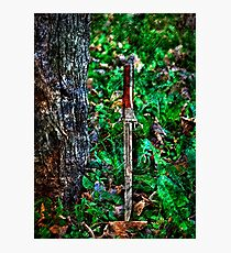 The Bloody Forest Fine Art Print Photographic Print