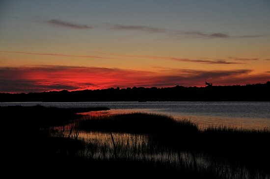 sunset over quogue, penniman bay by Jacki Campany