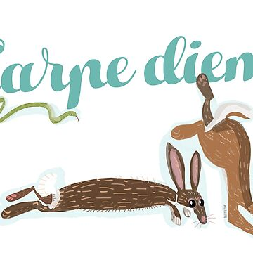 Carpe Diem (Hare) by belettelepink