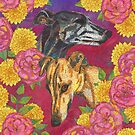 Floral Greyhound Girlies by lottibrown