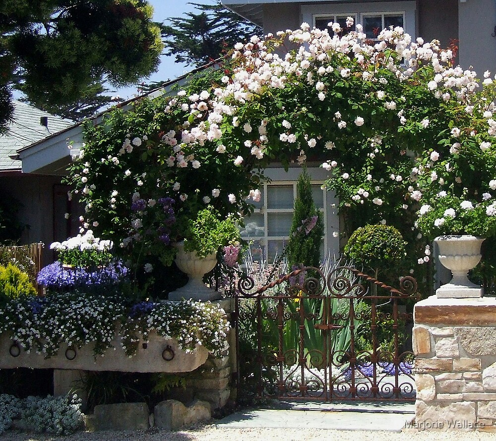 Rose covered walkway~Carmel-by-the-Sea by Marjorie Wallace