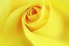 Unfolding the Romance of Creation by Prasad