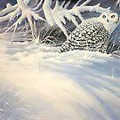Snowy by eric shepherd