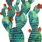 green cacti garden by freeinthelines