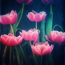 Pink Tulips by Suzette McGrath