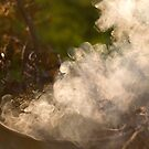 Autumn Afternoon Smoke Drifting by heidiannemorris
