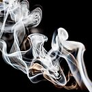 White Smoke Black Velvet  by heidiannemorris