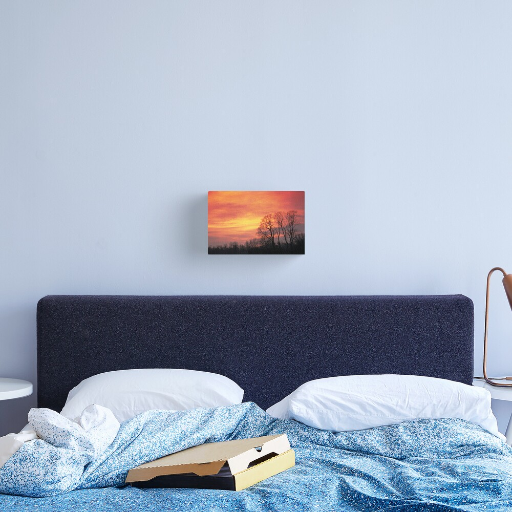 Winter sky Canvas Print