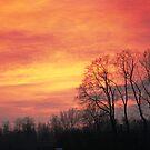 Winter sky by Antanas