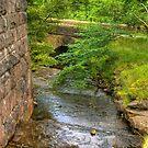 Stream Crossing -  Dentdale by Trevor Kersley