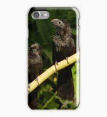 bird II - pájaro iPhone Case/Skin