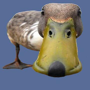 Duck Selfie by SHARMO