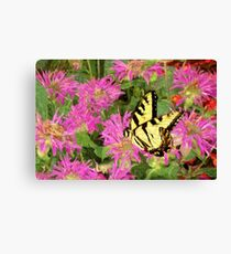 Garden Butterfly I / Canvas Print