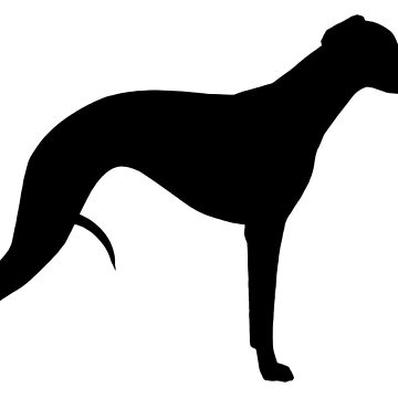 Whippet Silhouette(s) by ShortCoffee