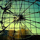 Crashed by Mojca Savicki