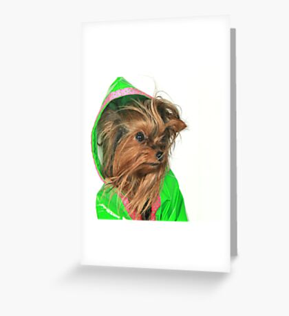Are you sure Lime Green looks good on me ? Greeting Card