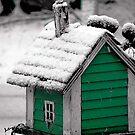 Tiny Winter Home by Taylor Winn