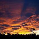 Heaven's Fire by Jodi Turner