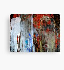 Uncontained - II Canvas Print