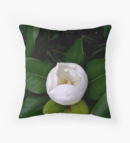 Nights in White Satin Throw Pillow