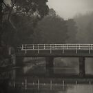 Elwood Canal  by Christine Wilson