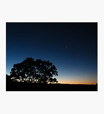 First Star Photographic Print