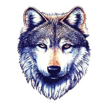 Lobo de adjsr