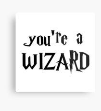 You're a wizard. Metal Print