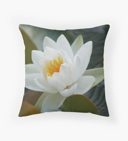 ~ Purity ~ Throw Pillow