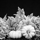Fall Harvest in Black and White by Sherry Hallemeier