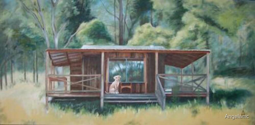 shack at lake 3 008 by Angelamc