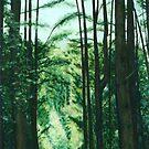 Stoodly Forest, Tasmania by Angelamc
