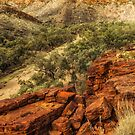 Trephina Gorge by Bette Devine
