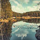 The Lake by Pascal Deckarm