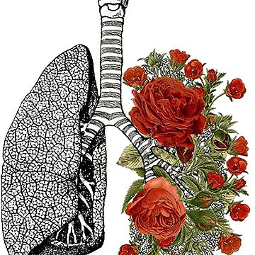 Flowered lungs by Maridac