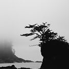 Foggy Morning on the Coast by Mikeinbc1