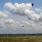 Wind Power Rules...... by LumixFZ28